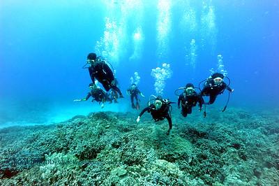 divers kailuabay 060516sun