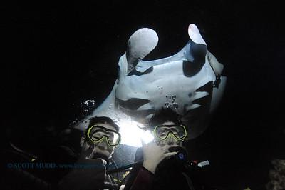 divers manta6 keauhou 060716tues