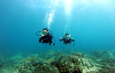 divers turtleheaven 061316mon