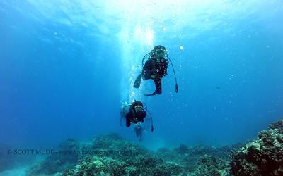 divers turtleheaven 060516sun