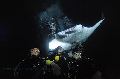 divers manta13 keauhou 060716tues