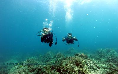 divers2 turtleheaven 061316mon