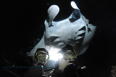 divers manta5 keauhou 060716tues