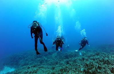 divers3 naiabay 080116mon