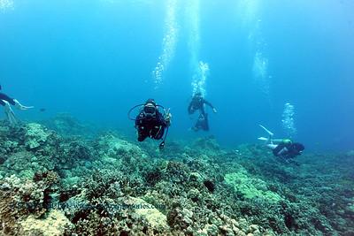 divers2 naiabay 080116mon