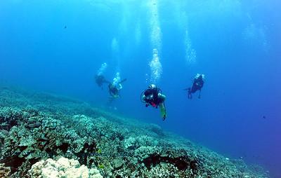 divers2 naiabay 080316wed