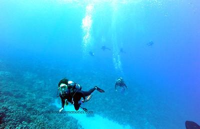 divers theshute 080416thurs