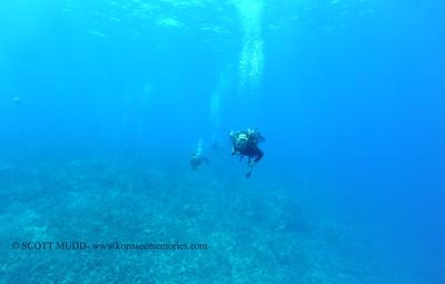 divers3 theshute 080416thurs