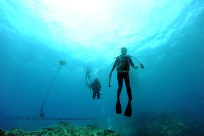 divers2 turtleheaven 080116mon