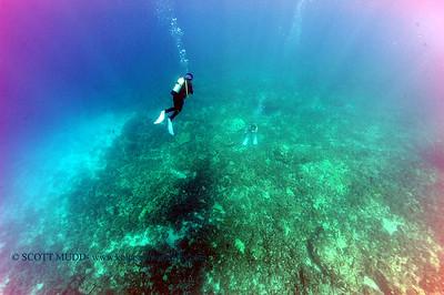 divers kaiwipoint 080116mon