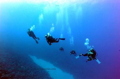 divers theshute 092316fri