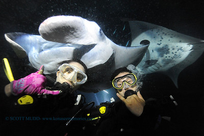 divers manta21 keauhou 090116 thurs
