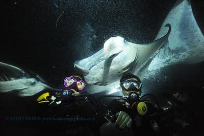 divers manta3 keauhou 090116 thurs