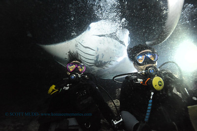 divers manta7 keauhou 090116 thurs