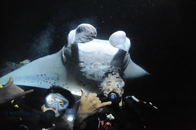 divers manta keauhou7 010417wed