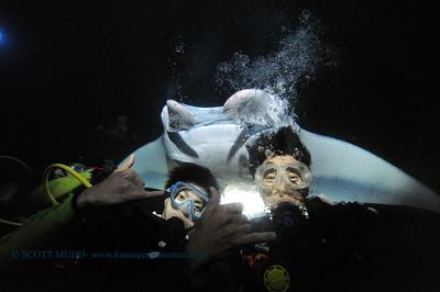 divers manta keauhou6 010417wed