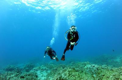 divers naiabay2 010317tues