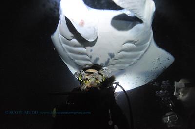 divers manta keauhou20 100517thurs