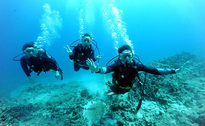 divers naiabay2 100417wed