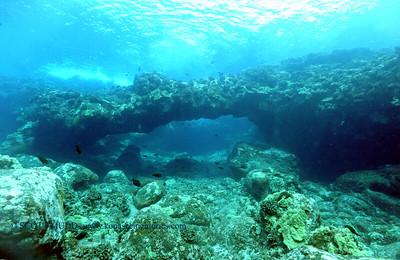 arch kaiwipoint 100217mon