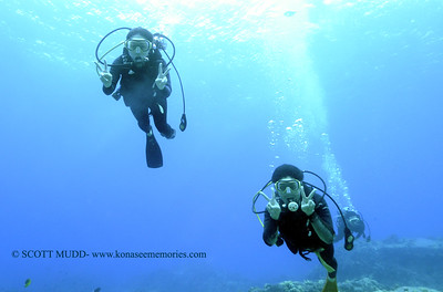 divers turtleheaven4 112717tues