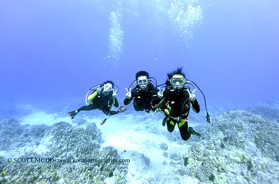 divers turtleheaven3 121617sat