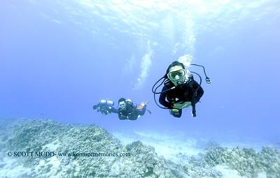 divers turtleheaven4 121617sat