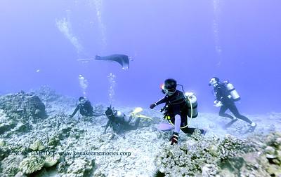 divers kailuabay4 122917fri