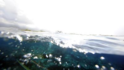 divers overunder theshute2 120317sun