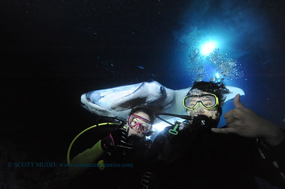 divers manta keauhou13 022117tues