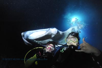 divers manta keauhou12 022117tues