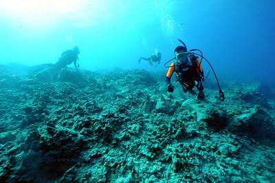 divers naiabay 022117tues