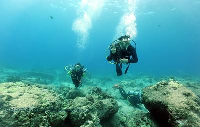 divers turtleheaven 022117tues
