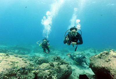 divers turtleheaven2 022117tues