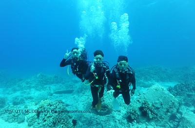 divers turtleheaven2 031717fri
