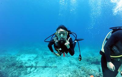 divers turtleheaven 031717fri