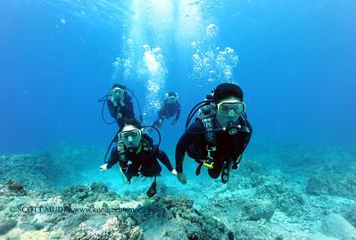 divers turtleheaven4 031717fri