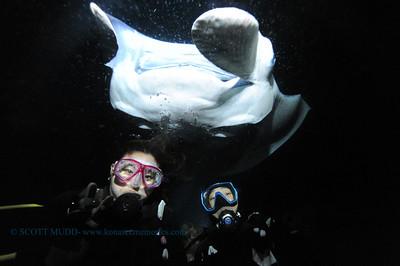 divers manta keauhou 041017mon