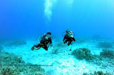 divers naiabay 040317mon