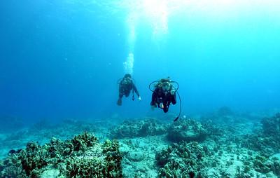 divers naiabay2 040317mon
