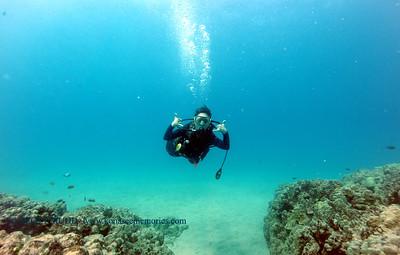 diver kailuabay4 052517thurs