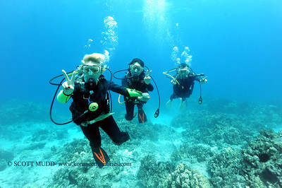 divers turtleheaven7 061417wed