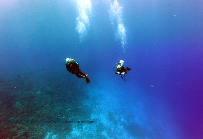 divers kaiwipoint 060717wed