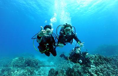 divers turtleheaven7 060217fri
