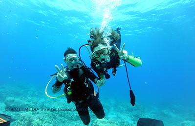 divers turtleheaven 060217fri