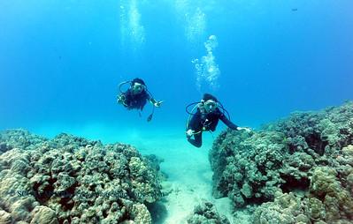 divers kailuabay6 061917mon