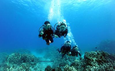 divers turtleheaven9 060217fri