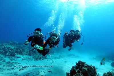 divers turtleheaven13 060217fri