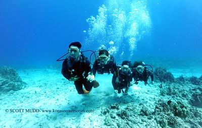 divers turtleheaven11 060217fri