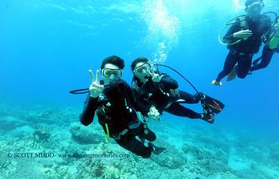 divers turtleheaven4 060217fri